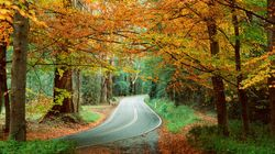 The Best Places To See Fall