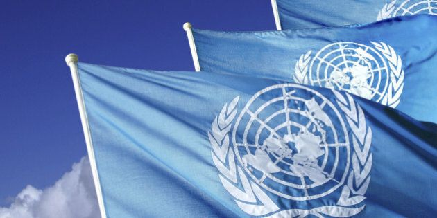 2015 and the UN: Great Expectations in Times