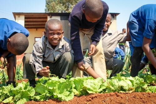 Helping Kids Understand the Gift of Food This