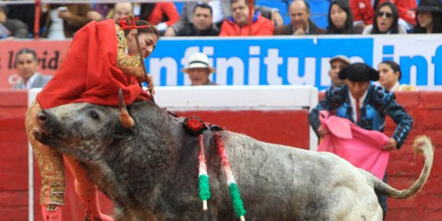 In this Dec. 28, 2014 photo, Karla de los Angeles, one of Mexico's few female bullfighters, is gored...