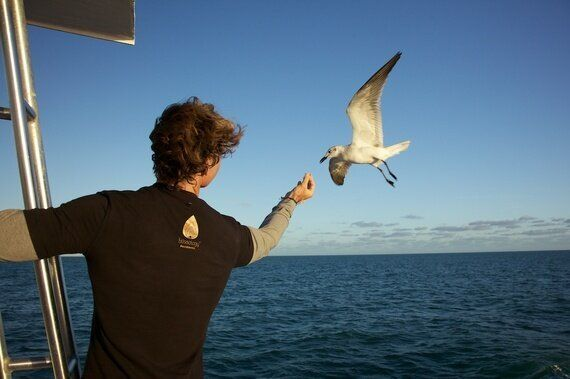 Helping Our Oceans Gave Me Hope, The Best Birthday Present Of