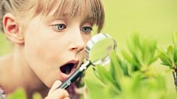 Why Kids Today Need Nature