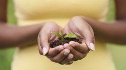 The Environment Needs Citizen