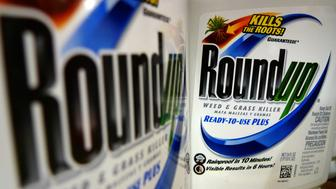 FILE - In this Tuesday, June 28, 2011, file photo, bottles of Roundup herbicide, a product of Monsanto, are displayed on a store shelf in St. Louis. German drug and chemicals company Bayer AG announced Monday, May 23, 2016, that it has made a $62 billion offer to buy U.S.-based crops and seeds specialist Monsanto. A merger between Bayer and Monsanto would put together two giant makers of chemicals, one that focuses on people and animals, and another that focuses on plants. (AP Photo/Jeff Roberson, File)