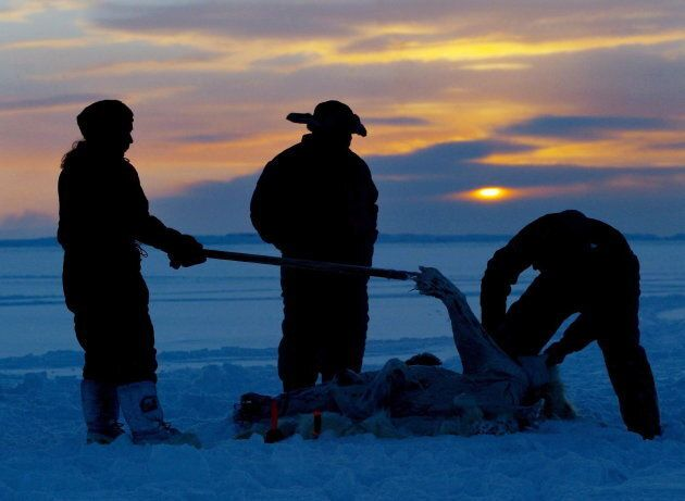 Inuit hunters, left to right, Meeka Mike, Lew Philip and Joshua Kango skin a polar bear on the ice as...