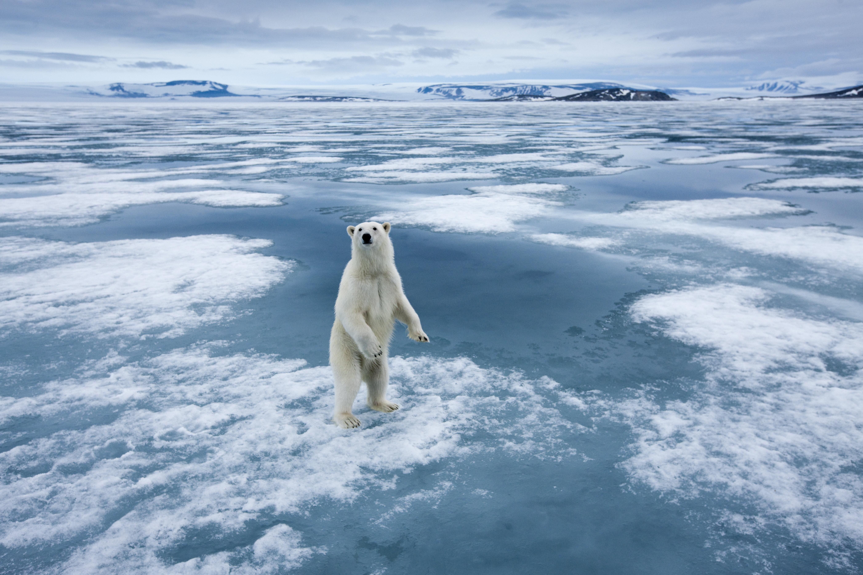 이산화탄소 수치가 인류 역사상 최고점을