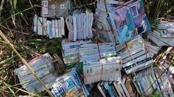 図書館の本、京都府の山中で大量に捨てられる。少なくとも6図書館の蔵書か