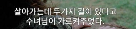 해당 사용자가 DVD프라임에 제보한