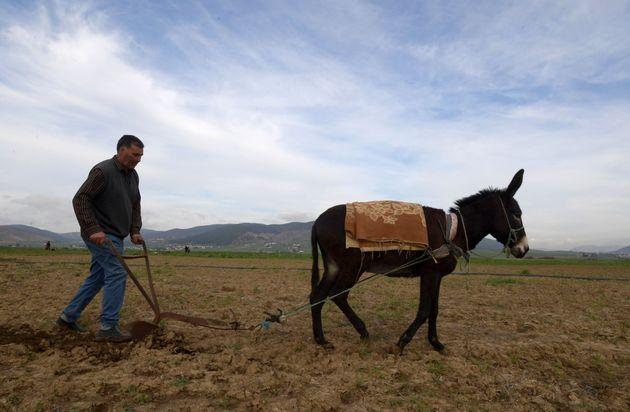 ALECA: Vers une précarisation de l'agriculture