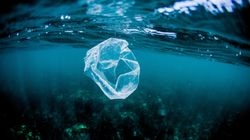 Il découvre du plastique à 11 000 mètres de