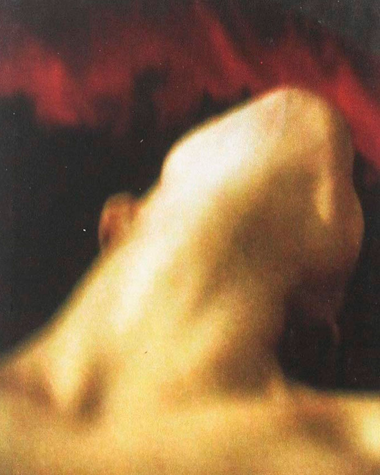 Detalle de la portada del libro 'En el jardín del ogro', de Leila