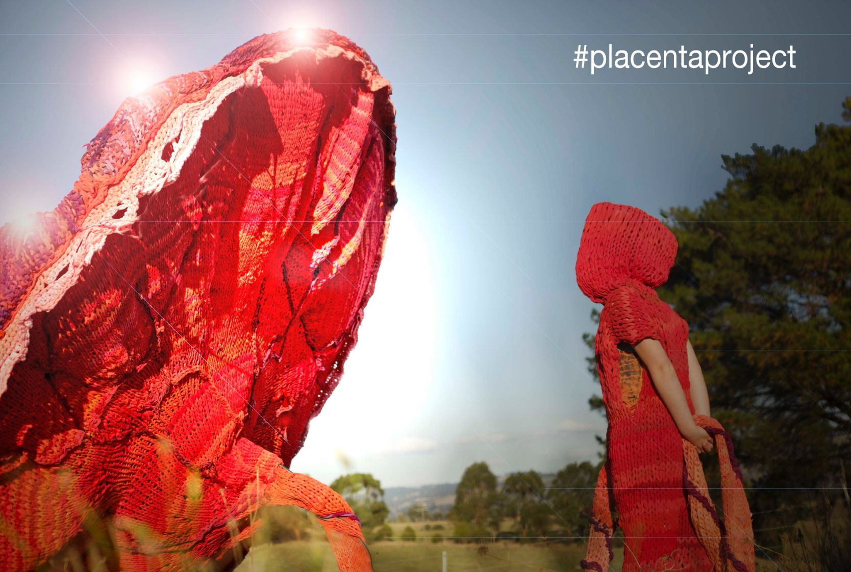 There's A 330-Pound Knitted Placenta On Display In Australia Right