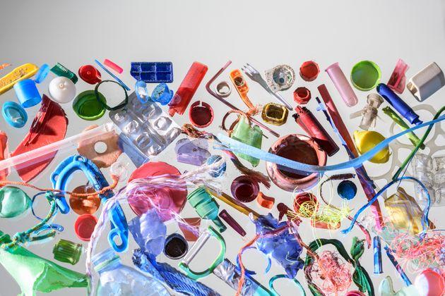 지구 최대의 산소 생산 미생물이 플라스틱에 위협받고