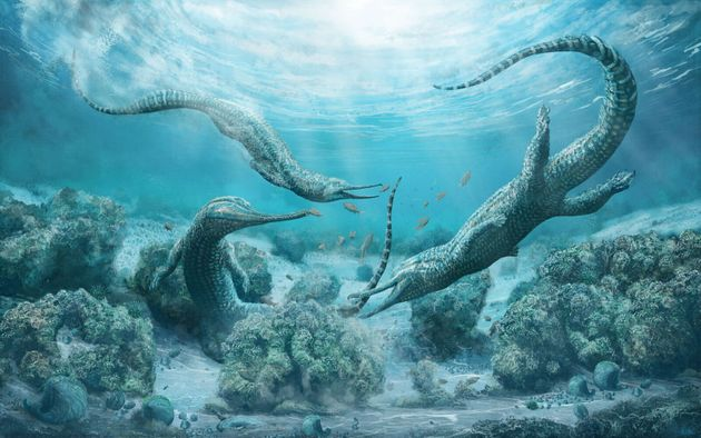 Ένας τρόμος της θάλασσας: Προϊστορικό «τέρας» μεγέθους