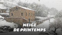 Ces images de la Corse sous la neige nous feraient presque oublier qu'on est au