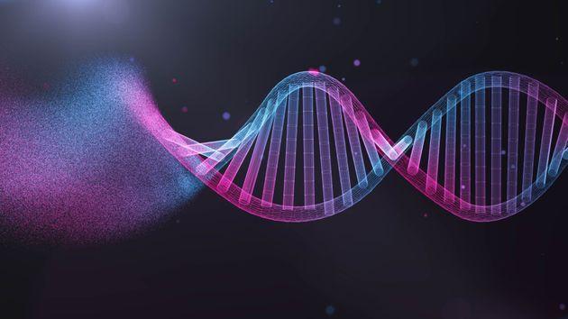 Ottenuto il primo batterio sintetico con un Dna ridotto, più vicina la vita