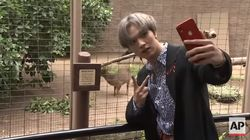 이 아이돌 멤버의 LA 동물원 방문이 특별한