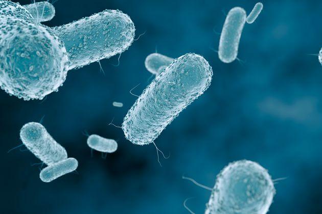 Επιστήμονες δημιούργησαν τεχνητή μορφή ζωής, με «συνθετικό
