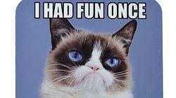 Grumpy Cat est