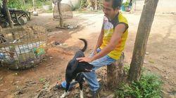 Σκύλος έσωσε βρέφος που ήταν θαμμένο σε χωράφι - Το έθαψε η μητέρα