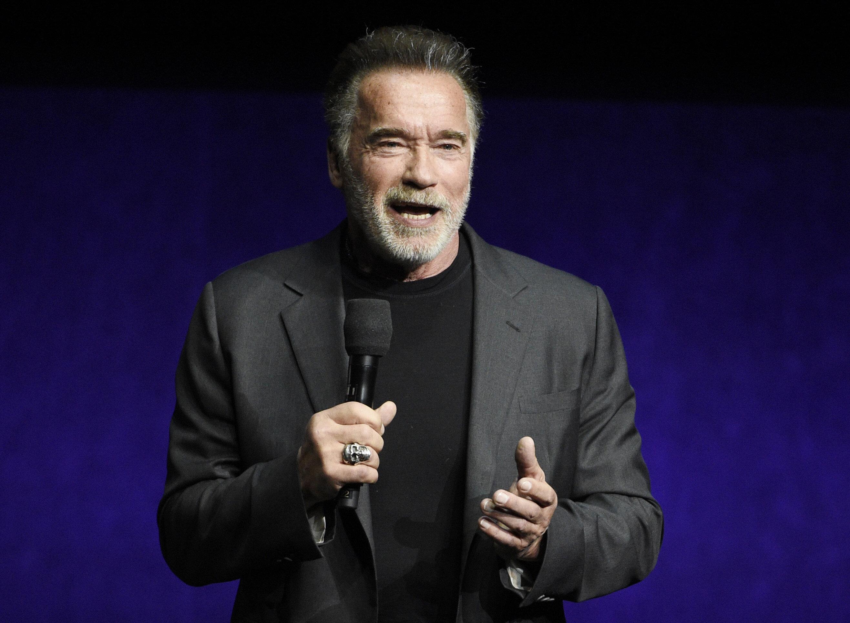 Arnold Schwarzenegger Assaulted By Man At ...