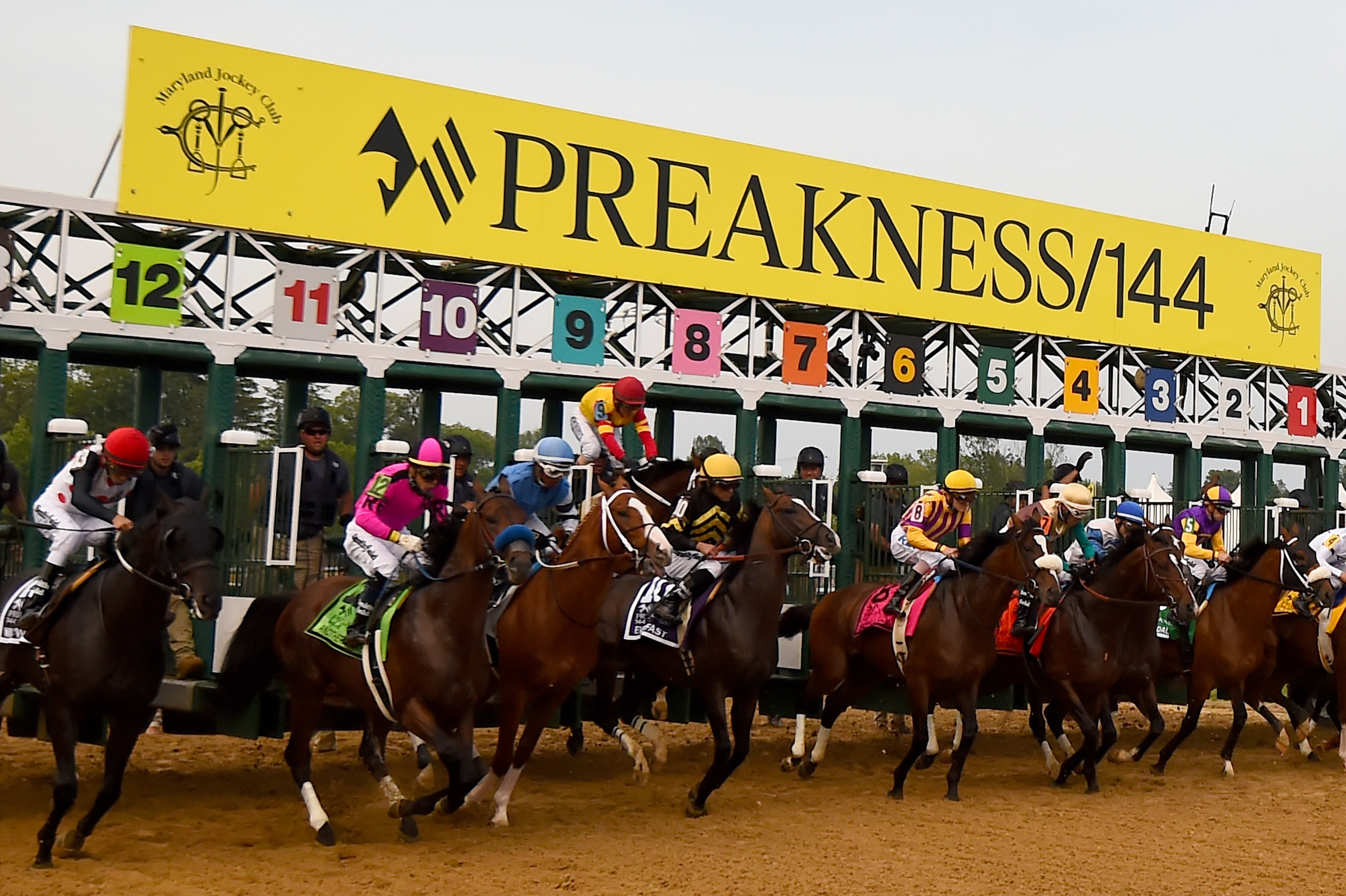 After shaking the jockey John Velazquez right out of the grid, Bodexpress finished the Preakness Stakes Saturday solo.