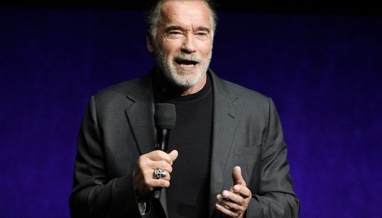 Arnold Schwarzenegger Assaulted By Man At South Africa