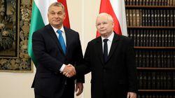 Elezioni 2019. Orban, il più discusso, e Kaczyński, il più conteso, senza rivali (di G.