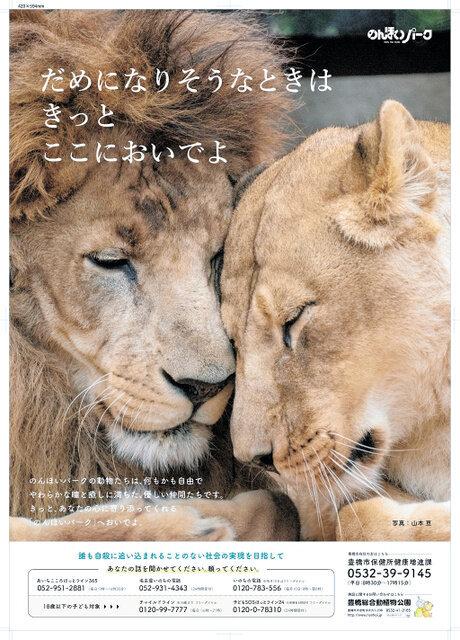 ポスターで話題の雄ライオンが死ぬ。「だめになりそうなときは きっと ここにおいでよ」