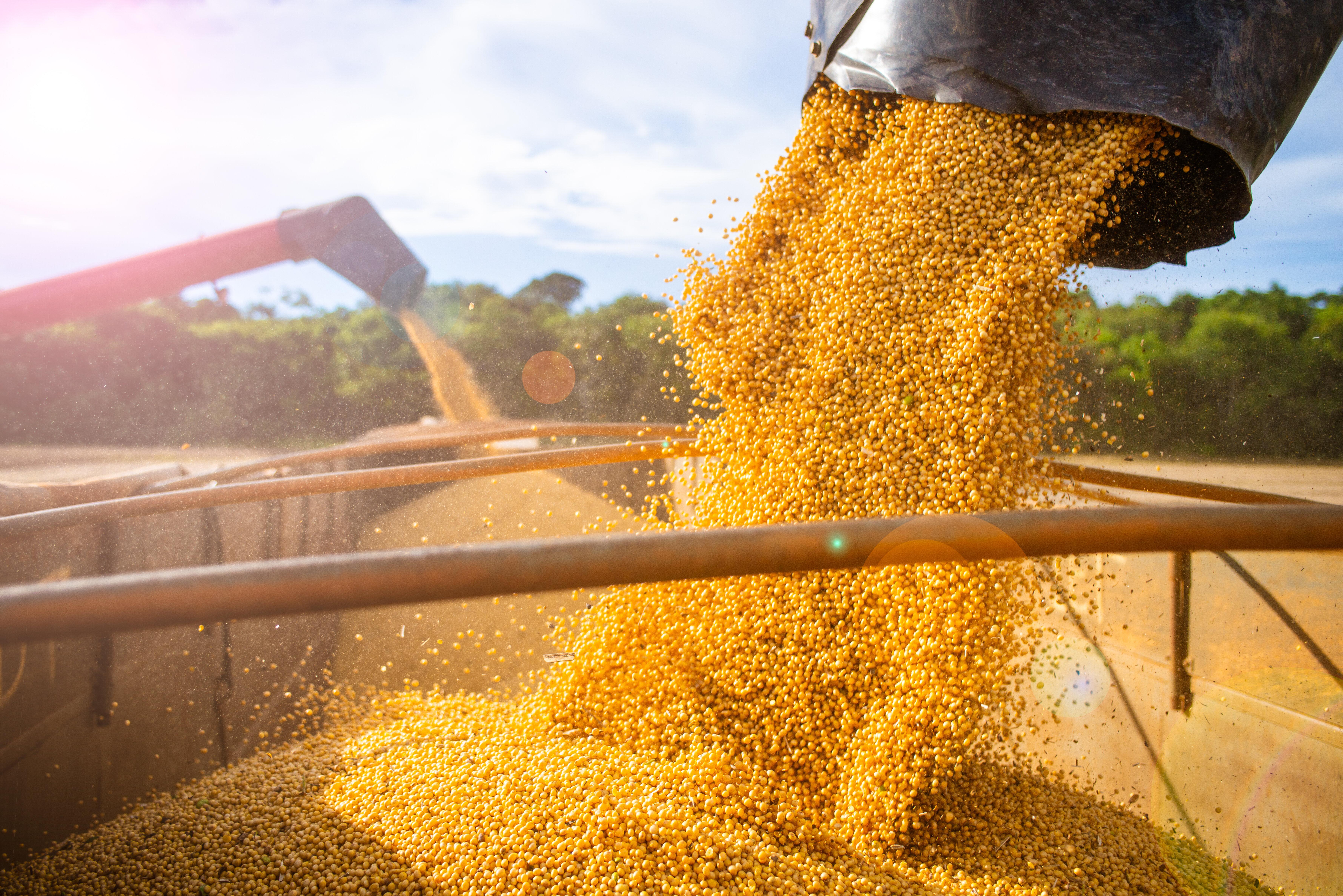 Les Producteurs de grains du Québec souhaitent une aide financière