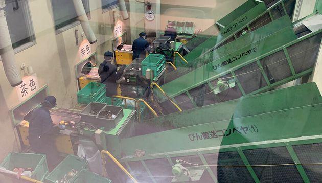 機械で色分けをしたビンを、最後に手作業で確認。リサイクル過程には手作業が多いそうだ。