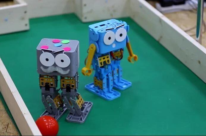 Marty, le robot qui vous apprend à programmer en apprenant à marcher
