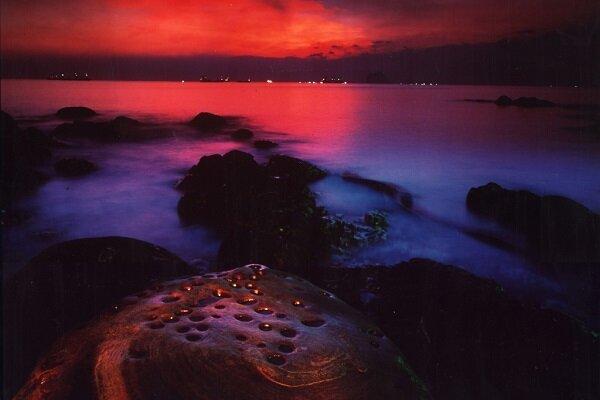 晚上的景觀也很迷人。(圖片來源/觀光局)