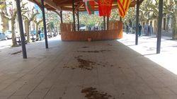 Un grupo de encapuchados esparce estiércol antes de un acto del PP en Navarra y Cayetana les responde: