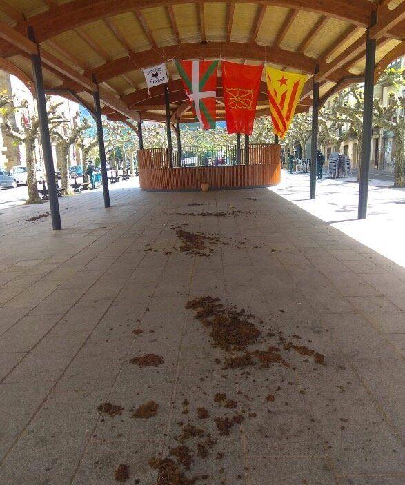 Un grupo de encapuchados esparce estiércol antes de un acto del PP en Navarra y Cayetana les responde:...
