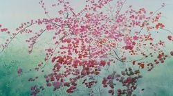 «22 Άνθη για το Μουσείο Μπενάκη» από τον ζωγράφο Νίκολας