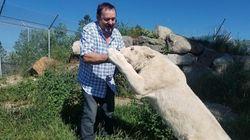 Le propriétaire du zoo de St-Édouard accusé de cruauté