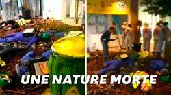 Le siège de Bayer-Monsanto occupé par une scène de nature