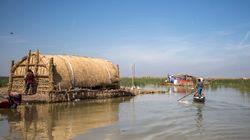En Irak, les marais misent sur l'écotourisme pour redevenir jardin