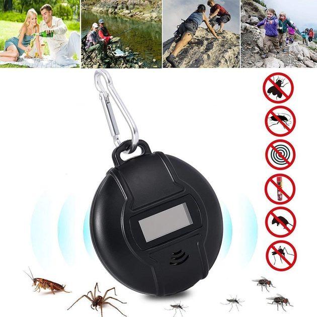 Zanzare e cimici, rimedi per proteggersi in casa e