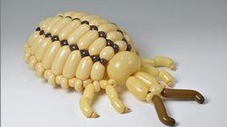 Des animaux en ballons, plus vrais que nature, de l'artiste Masayoshi