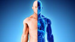 Amazon veut faire un scan 3D de votre corps contre une carte-cadeau de