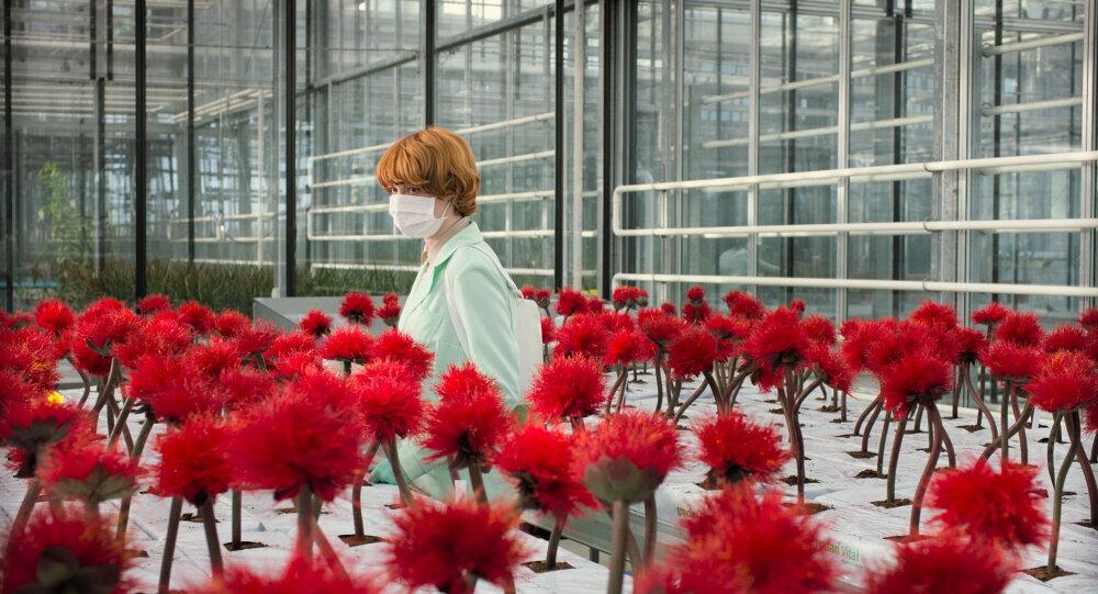Os filmes mais estranhos (e os mais emocionantes) exibidos em Cannes até