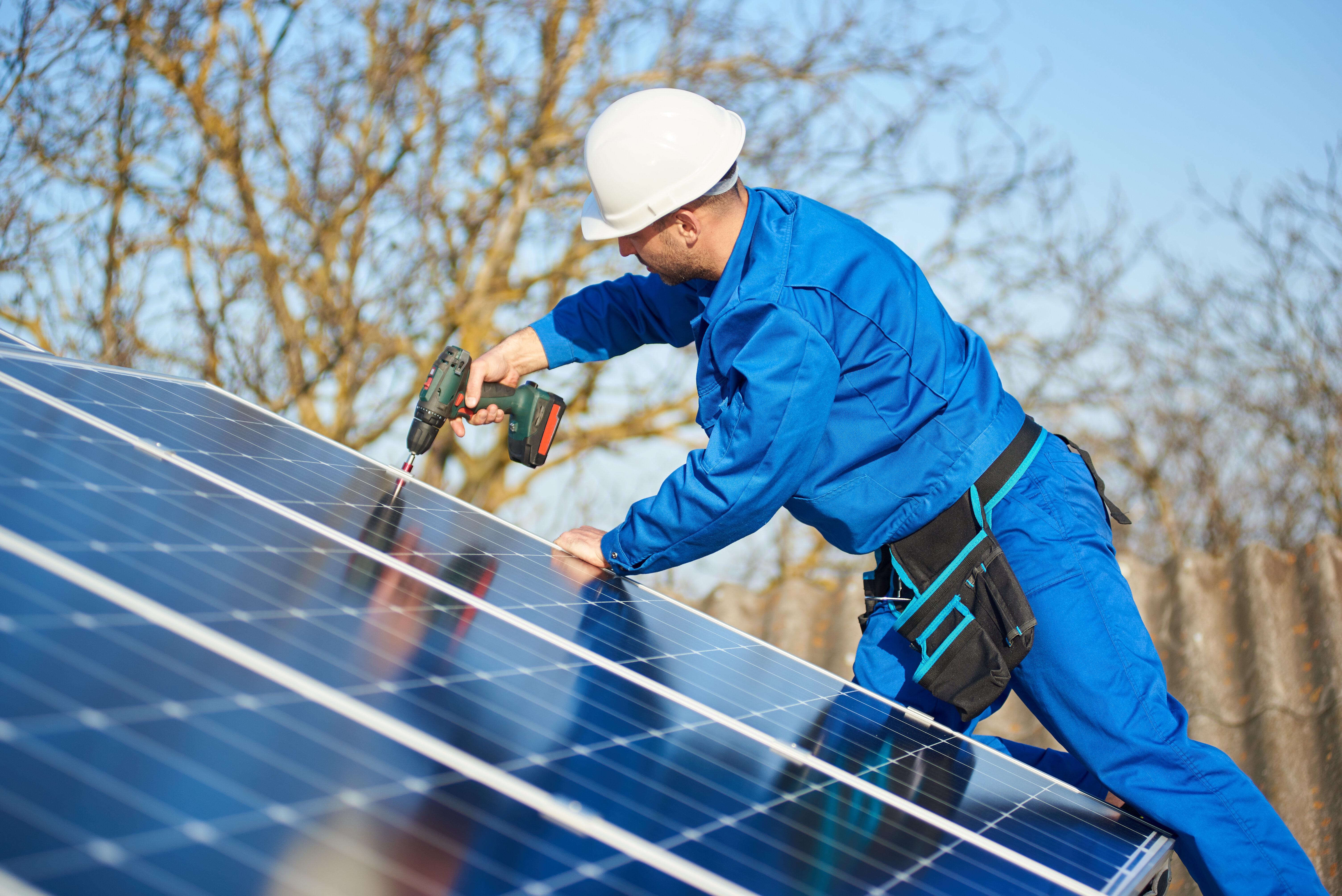 Les emplois verts sont en pleine croissance au