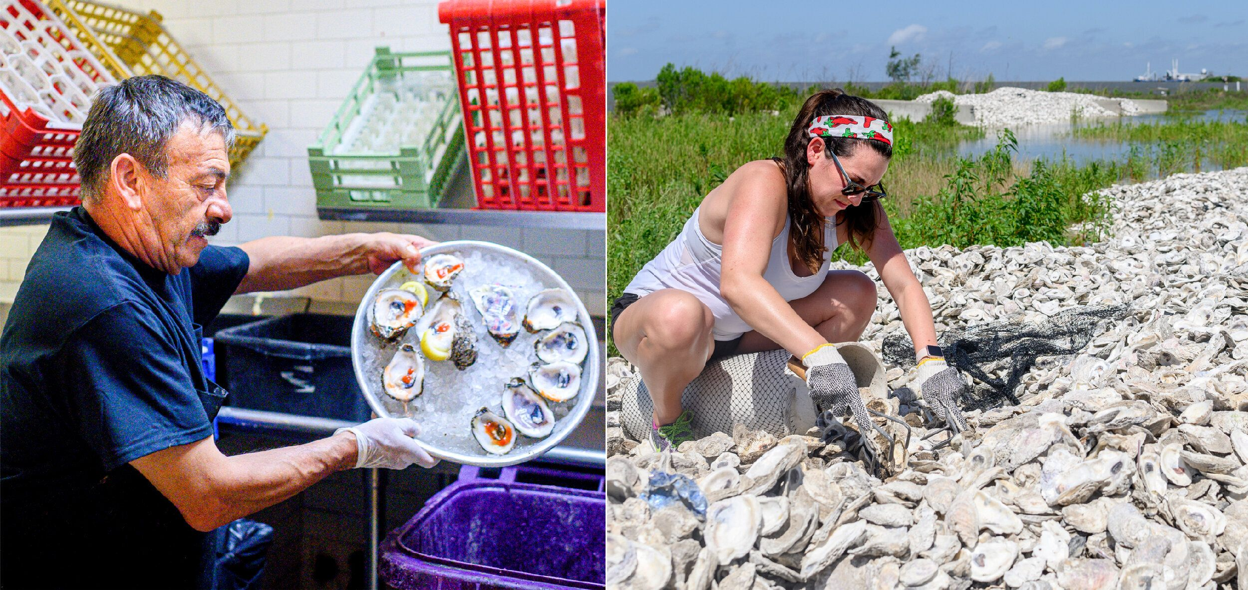 LEFT:Jose Orlando dumps the shells of eaten oysters into the collection bin in the kitchen at Superior Seafood in New O