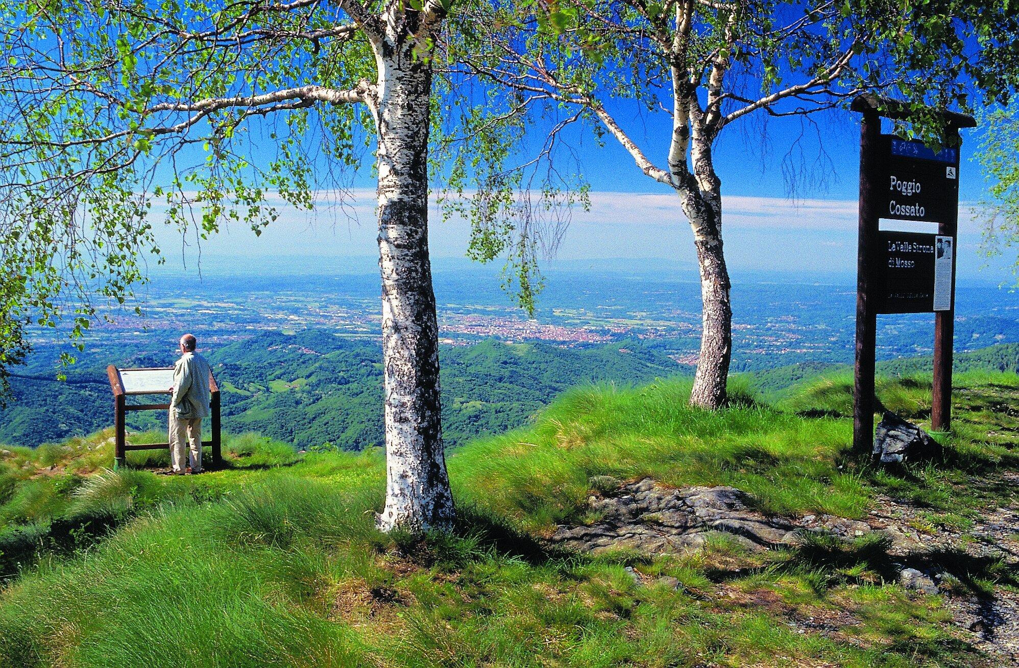 Estate a colori dell'Oasi Zegna: rododendri in fiore, summer camp e