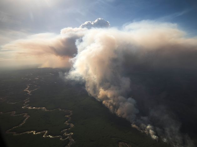 A fire burns near High Level, Alta., on May 21, 2019, in this handout photo from the government of