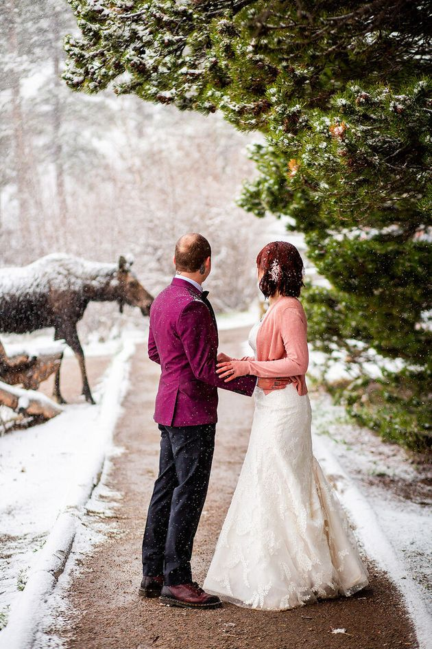 The moose was about 15 feet away from the couple on the walking