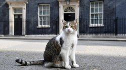 Οι πρωθυπουργοί φεύγουν, ο Λάρι μένει: Ο δημοφιλέστερος υποψήφιος διάδοχος της