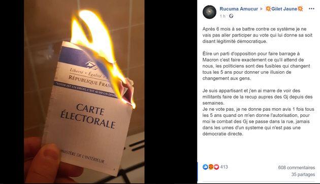 Élections européennes : les gilets jaunes affichent leur carte d'électeur brûlée ou